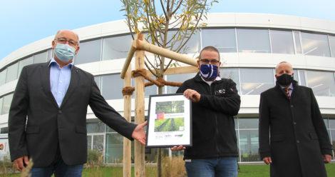 Baumpflanzung bei INEOS in Köln