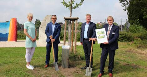 Neuer Baum in Rheine von Piepenbrock